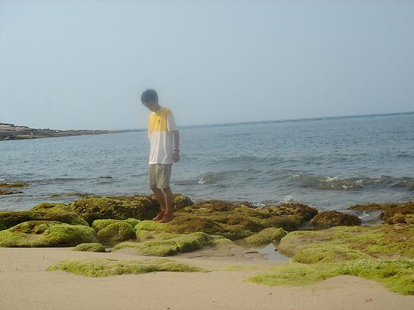 小強  忘情的賞著海