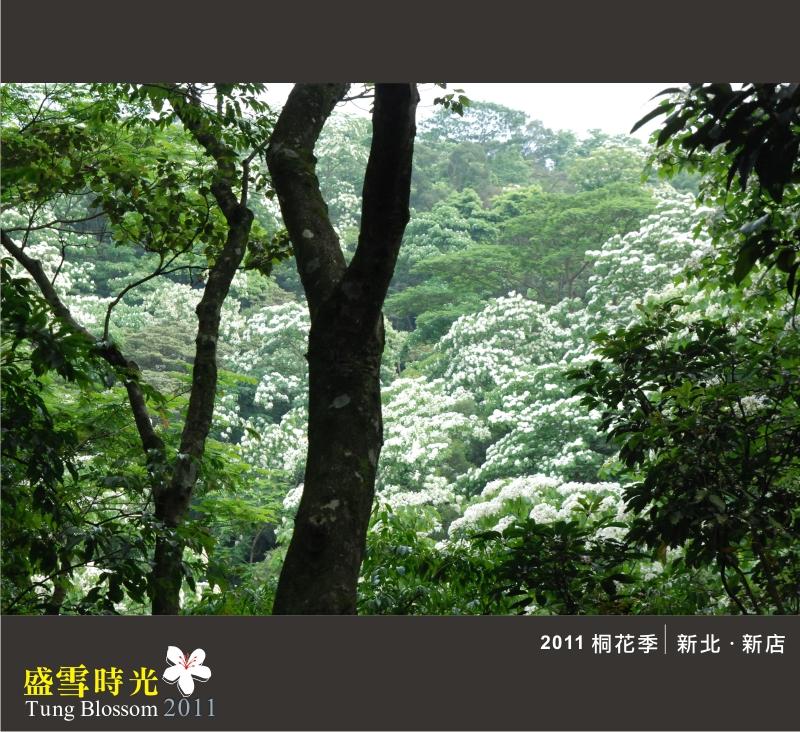 盛雪時光2011-20.jpg