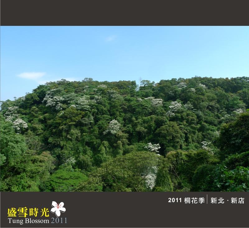 盛雪時光2011-10.jpg