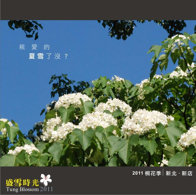 盛雪時光2011-1.jpg
