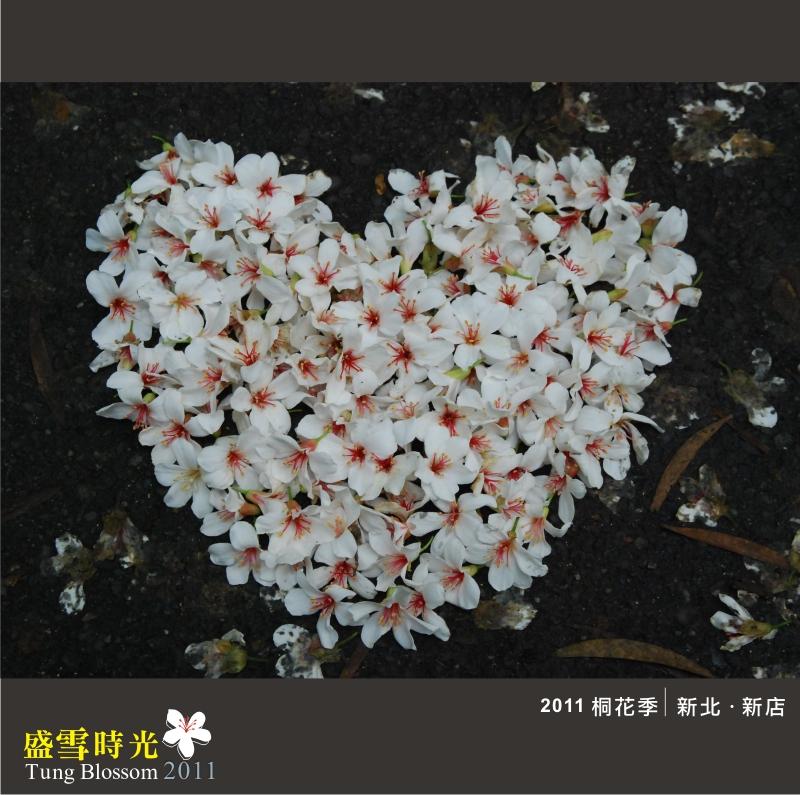 盛雪時光2011-15.jpg