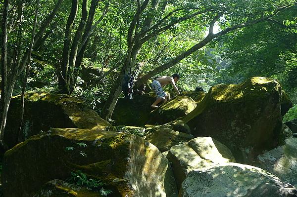 山裡頭的猿人