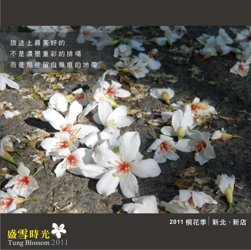 盛雪時光2011-5.jpg