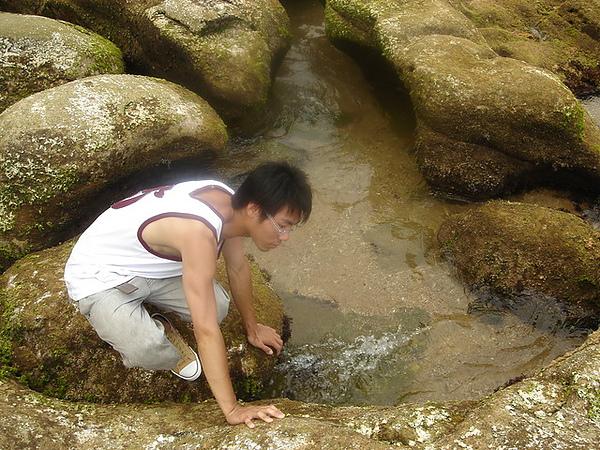 傑在找尋螃蟹