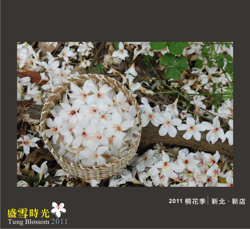 盛雪時光2011-14.jpg