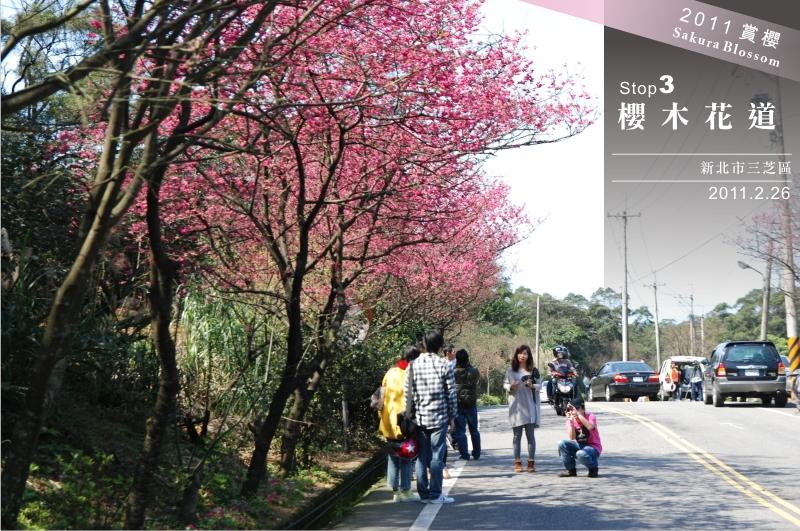 北海岸賞櫻S3.jpg