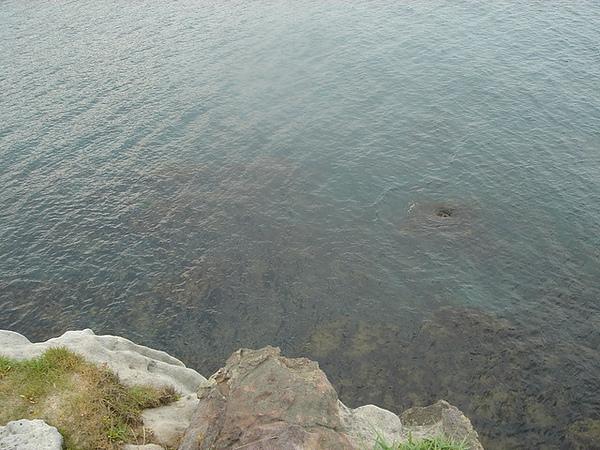 崖底的大海