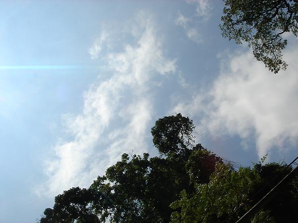 今天的藍天