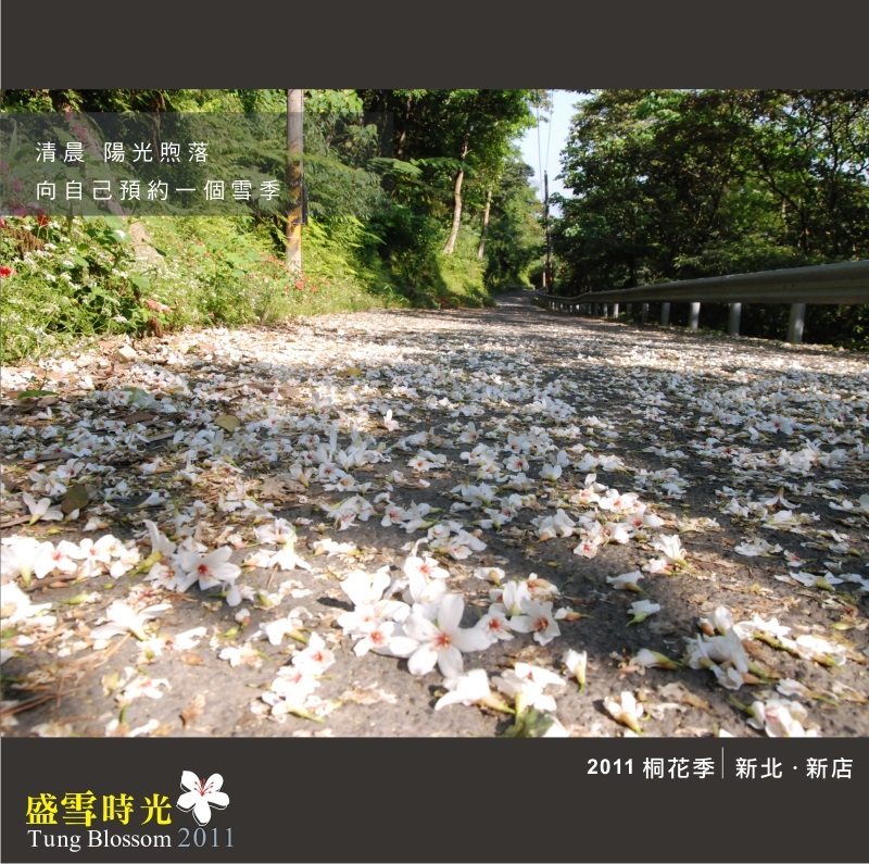 盛雪時光2011-4.jpg