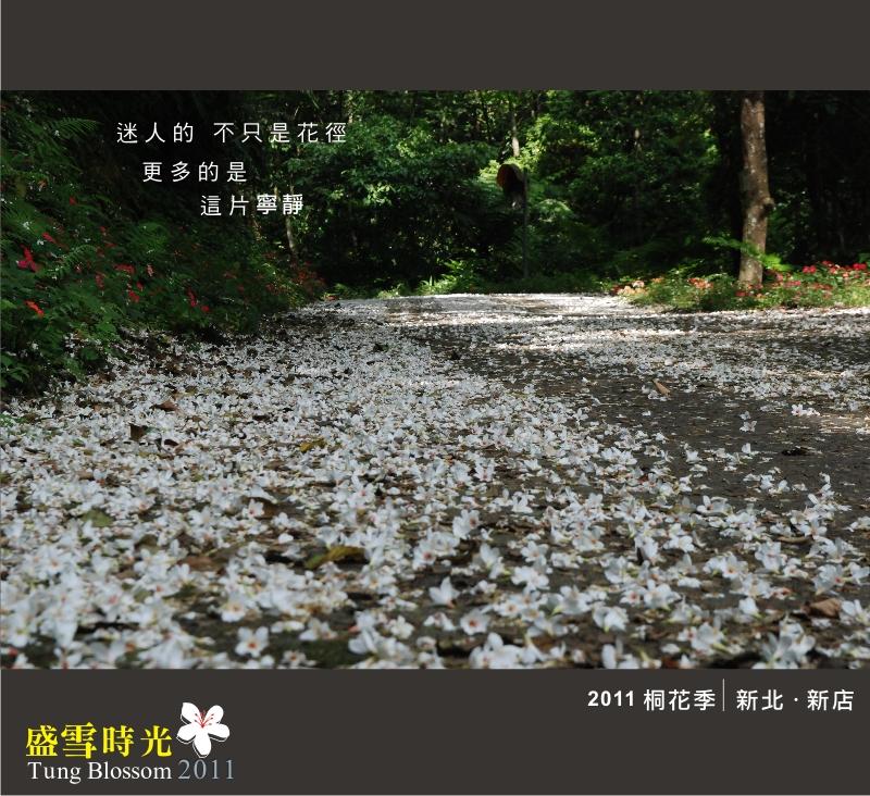 盛雪時光2011-7.jpg