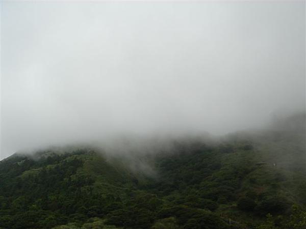 霧起冷水坑