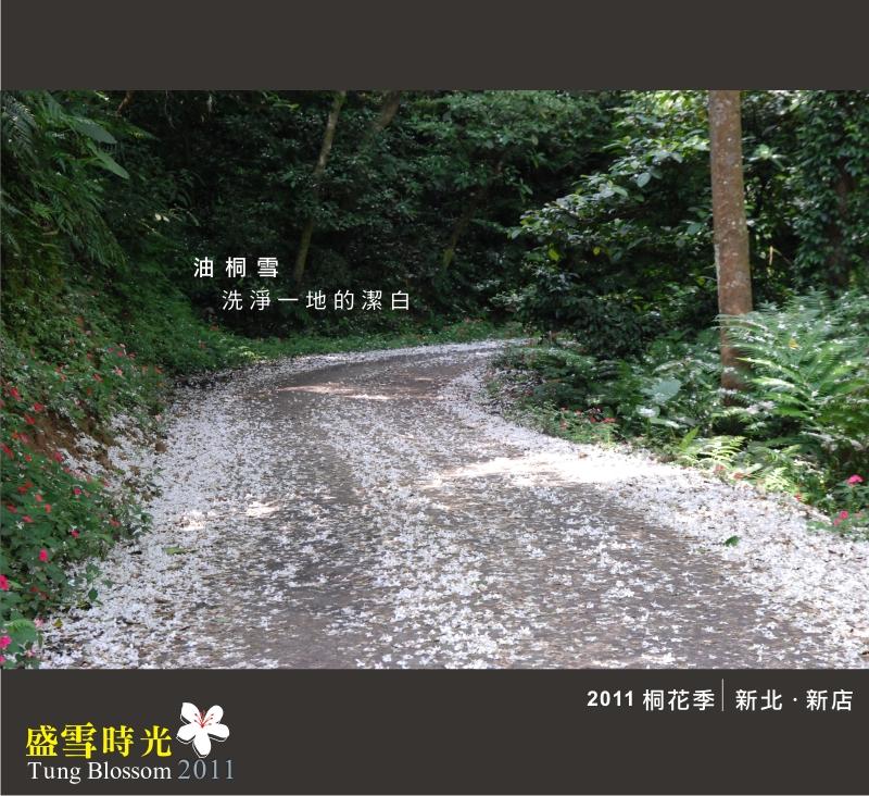 盛雪時光2011-8.jpg