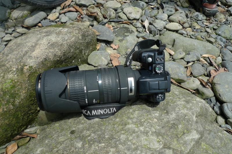 P1260991.JPG