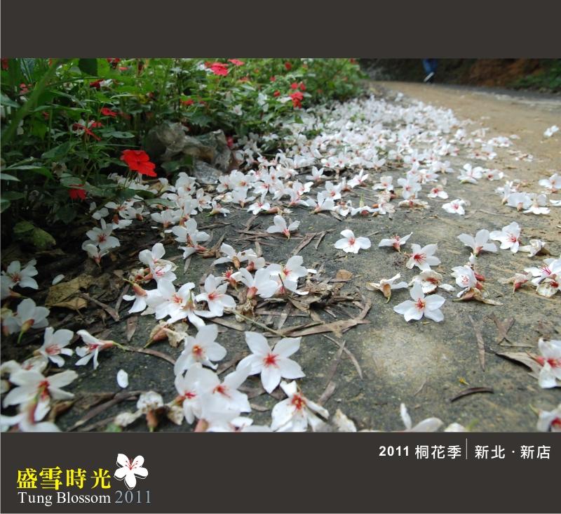 盛雪時光2011-21.jpg