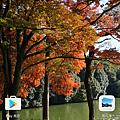 Screenshot_20161212-204508.png
