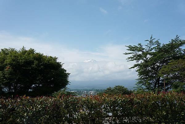 NEX-2014-06-23 07-50-54-S.JPG