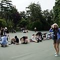 NEX-2014-06-24 09-39-36-S.JPG