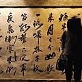 2011-01-01 18-43-17.jpg