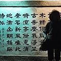 2011-01-01 18-40-35.jpg