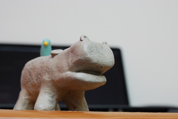 HIPPO BIRD_002_.jpg