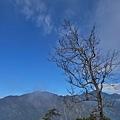 2011-01-22 12-23-38.jpg
