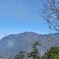2011-01-22 12-16-44.jpg