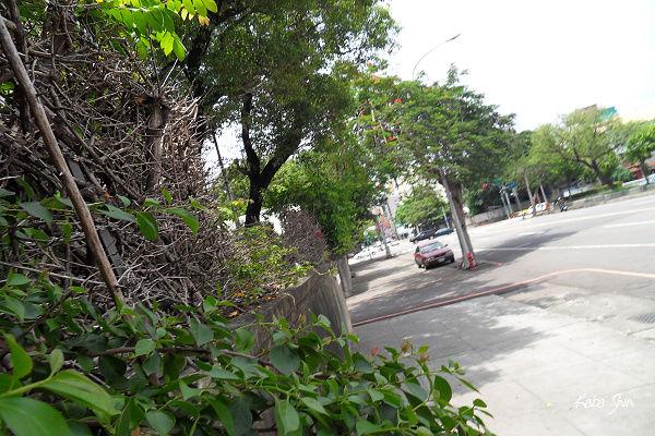 2010-06-05 13-12-28.jpg