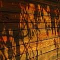2011-01-01 13-05-51.jpg
