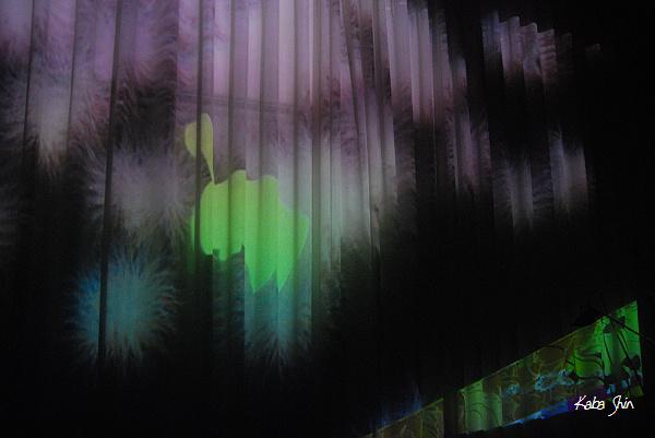 2011-02-19 11-41-51.jpg