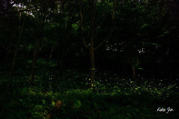 2010-04-21 19-26-40.jpg