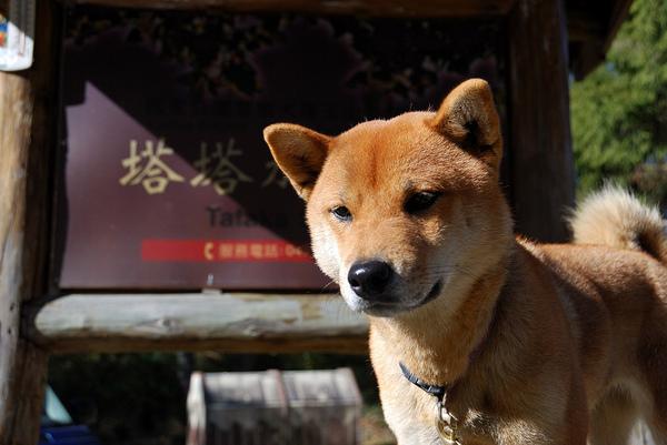 Yushan Day1_009_.jpg