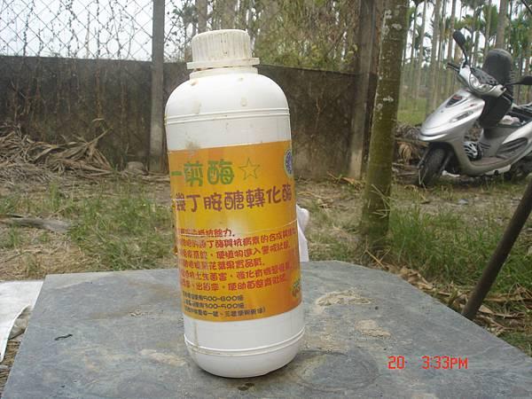 幾丁胺醣轉化酶