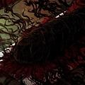 ev142幼少紅雀と刺青a_l