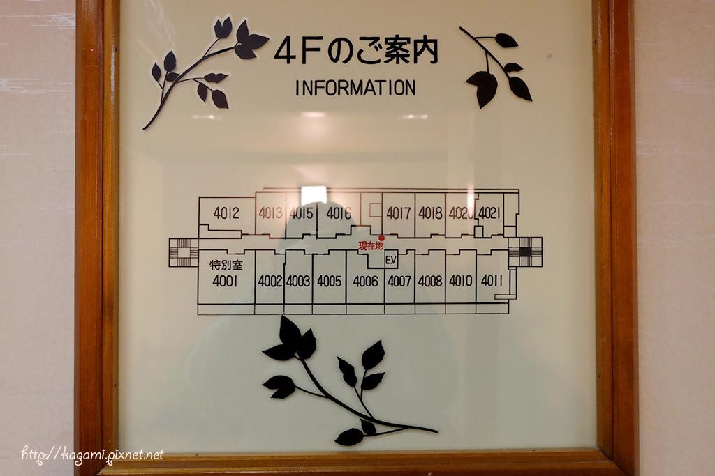 DSCF4713