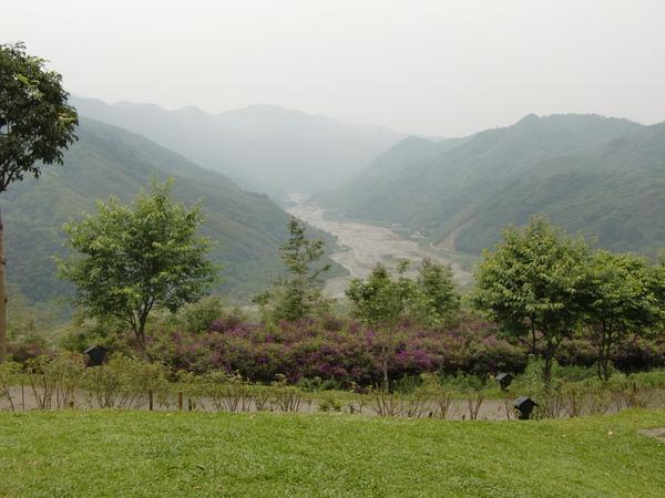 薰衣草森林美景