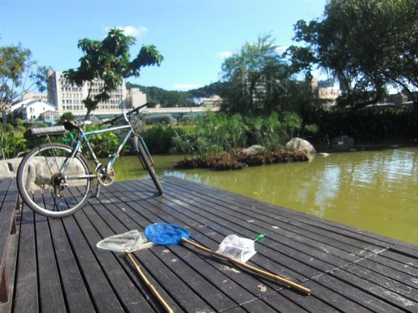 生態池撈魚記