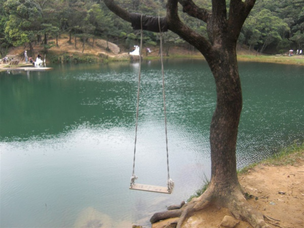 夢湖邊的鞦韆