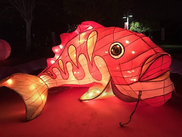溪州公園花燈_180222_0006.jpg