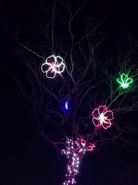 溪州公園花燈_180222_0016.jpg