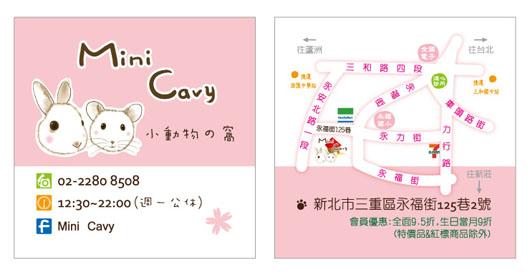 Mini Cavy 名片