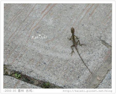 201005 華山 文學步道