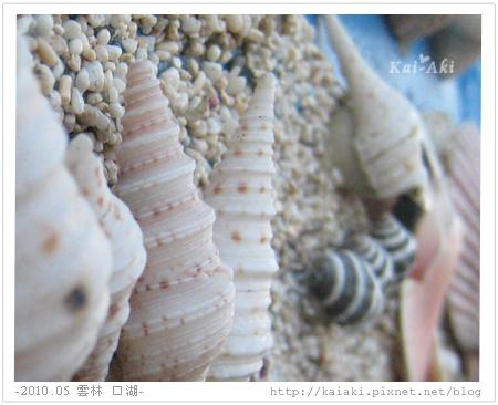 201005口湖-馬蹄蛤-化妝室1.jpg