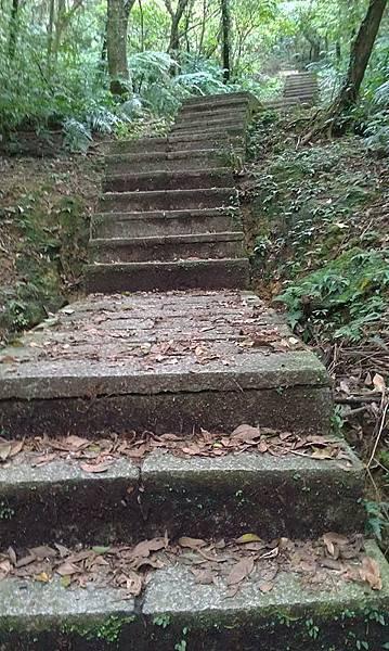 一開始就是好多好多的石梯