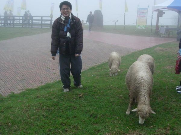 天氣一下又霧了起來