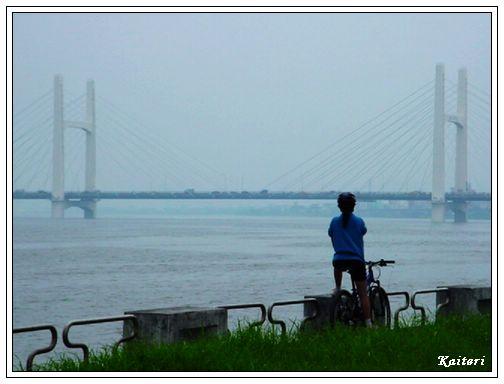 眺望重陽橋