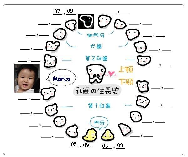 長牙記錄1-1.JPG