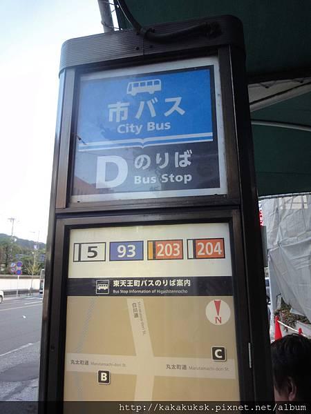 DSC09525