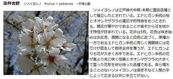 2016-04-01_205546