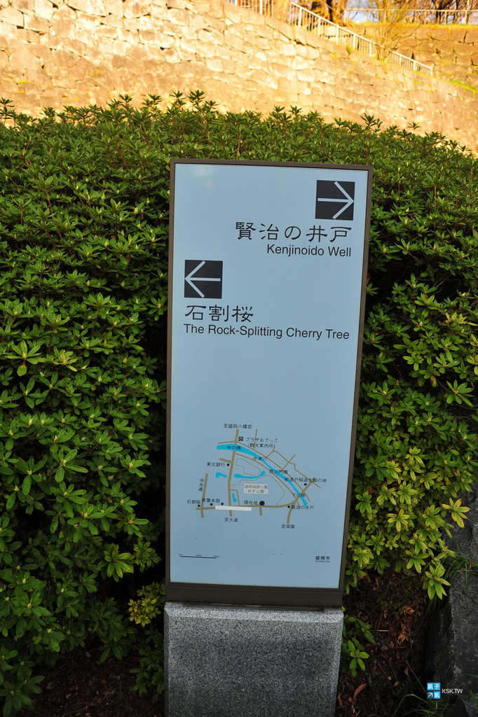 DSC_6406.jpg