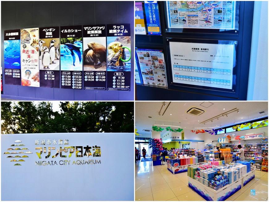 新潟水族館2.jpg
